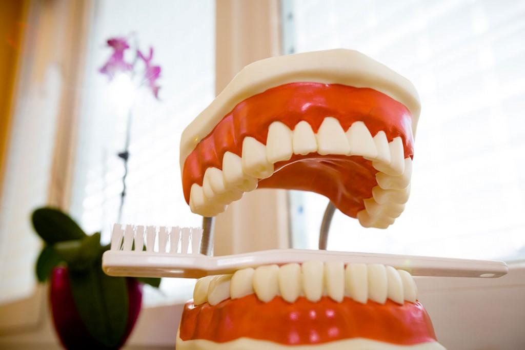 Zähneputzen lernen